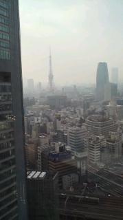 ロイヤルパーク・窓から②.JPG